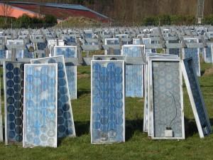 Abholbereite Solarmodule vor einer PV-Anlage