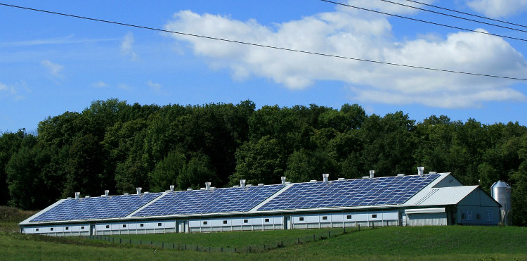 Solarstrom kann 2017 fast weltweite Netzparität erreichen