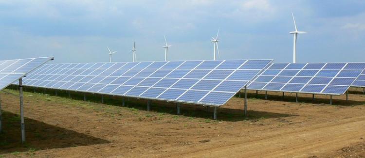 Erneuerbare Energien gewinnen das Rennen gegen fossile Brennstoffe