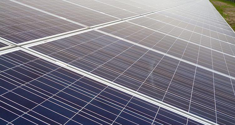 Sonneninvest startet drittes Crowdfunding – Milk the Sun liefert nächsten Solarpark