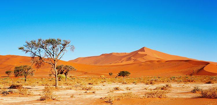 Solar-Boom in Afrika könnte endlich bevorstehen