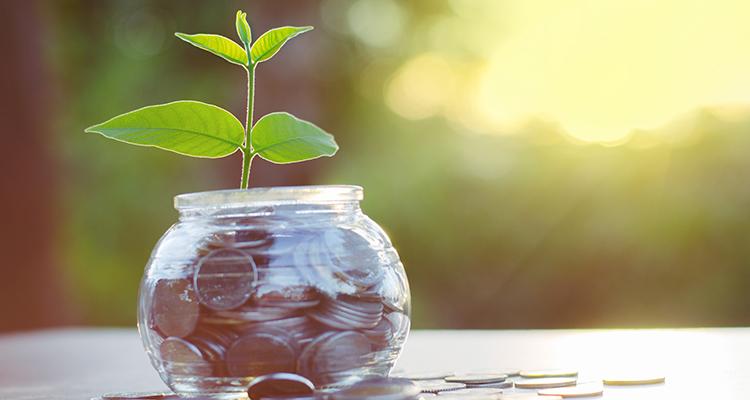 Investieren in Solar: Mehr grünes Gewissen als je zuvor