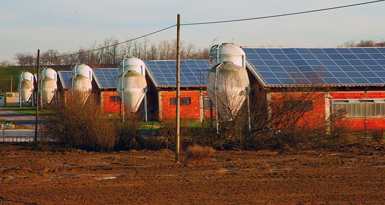 Reinigung von Solaranlagen auf Ställen