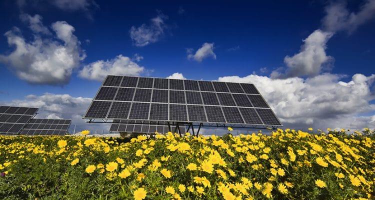Leitfaden: Direktinvestments in laufende Solaranlagen