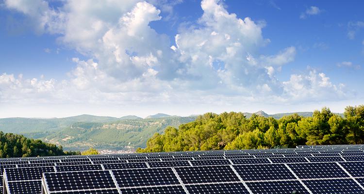 Flächen in benachteiligten Gebieten: Rheinland-Pfalz und Saarland planen Öffnung für PV