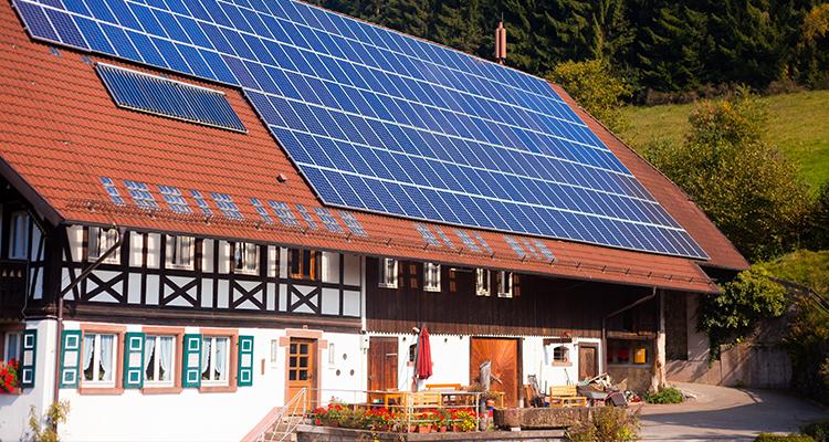 Kommt die Solarenergie zum Erliegen? BSW Solar schlägt wegen Förderdeckel Alarm
