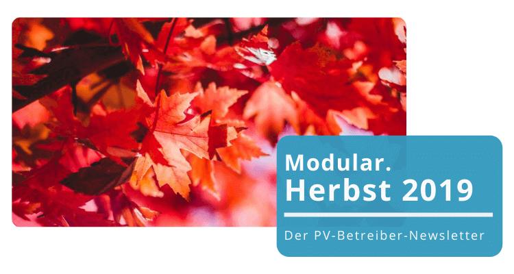 Der PV-Betreiber-Newsletter Herbst: Alles Wissenswerte zum Betrieb Ihrer PV-Anlage