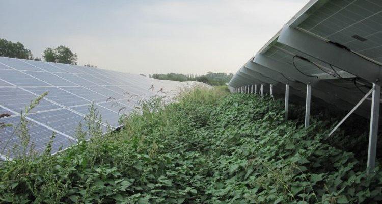 Die Technische Inspektion zur Abnahme von PV-Projekten: Worauf kommt es an?